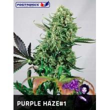 Purple Haze 1 (1 und) POSITRONICS