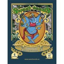Edición Coleccionista 2