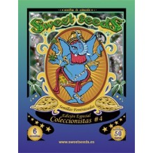 Edicion Coleccionista 4
