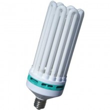 Bombilla CFL 300w Crecimiento Electrogrow